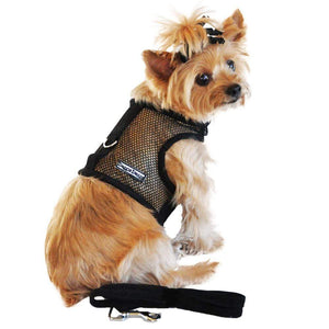 Pet Stop Store Sporty & Cute Black Mesh Velcro Dog Harness with Leash