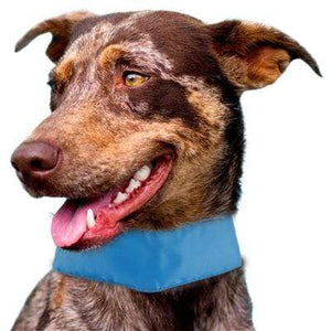 Pet Stop Store Summer-Cooling' Adjustable Cooling Dog Neck Wrap