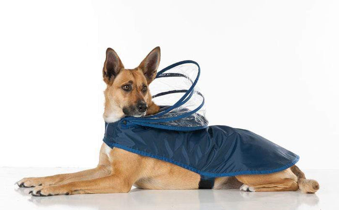 Navy Blue Raincoat for Dogs All Sizes