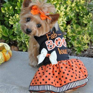 Pet Stop Store xs Fab-Boo-Lous Orange & Black Halloween Dog Harness Dress with Leash