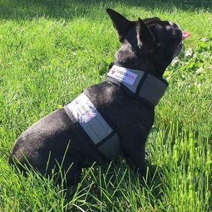 Pet Stop Store xs Cooling Dog Vest & Collar All Sizes