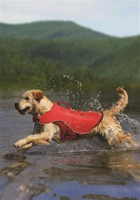 Kurgo Surf n Turf Pet Life Jacket for Dogs