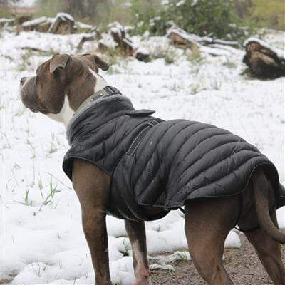 Modern Black Alpine Extreme Cold Puffer Dog Coat