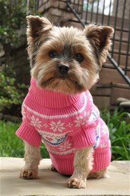 Pet Stop Store xxs Pink Snowflake & Hearts Dog Sweater