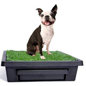 Petsafe Pet Loo Potty Training System - Small