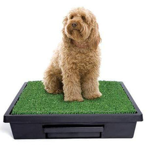 Petsafe Pet Loo Potty Training System - Large