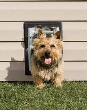 Petsafe Petsafe Wall Dog Door - Small