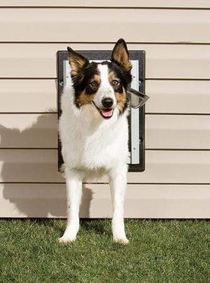 Petsafe Petsafe Wall Dog Door - Medium