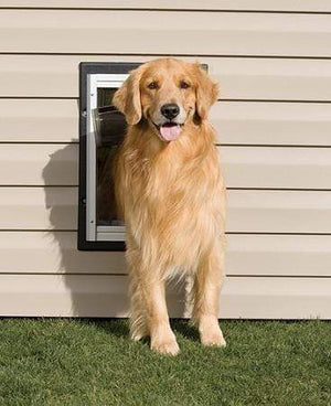 Petsafe Petsafe Wall Dog Door - Large