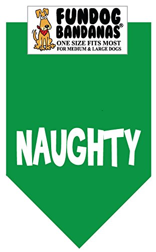 Naughty (Christmas) for Medium to Large Dogs - kelly green