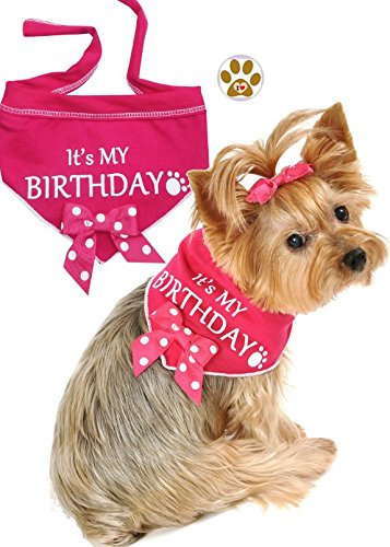 It's My Birthday Bandana Scarf with Pin- choose (girl) Pink or (boy) Blue - Dog Sizes Small thru Large