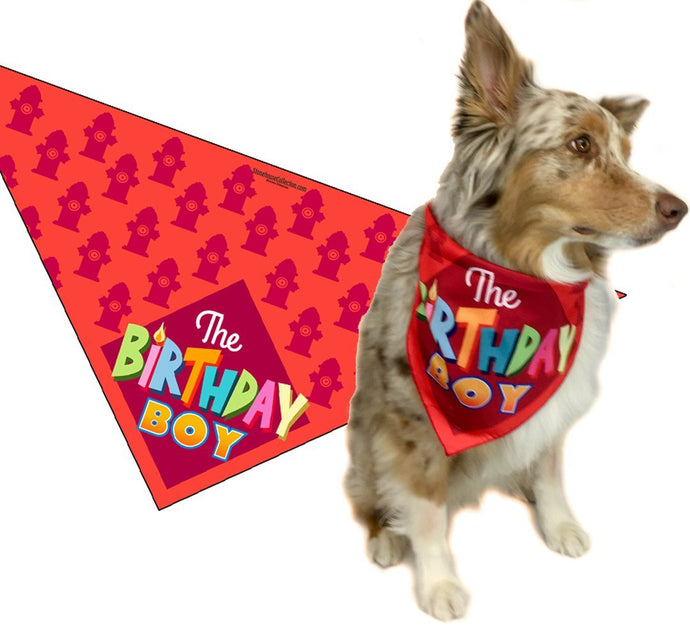 Birthday Boy - Happy Birthday Dog Bandana (Medium to Large)