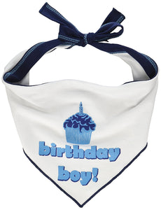 Birthday Boy Scarf - LARGE - by I SEE SPOT