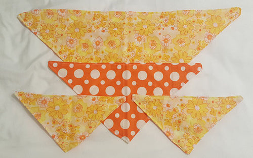 Spring Time Reversible Dog Bandana