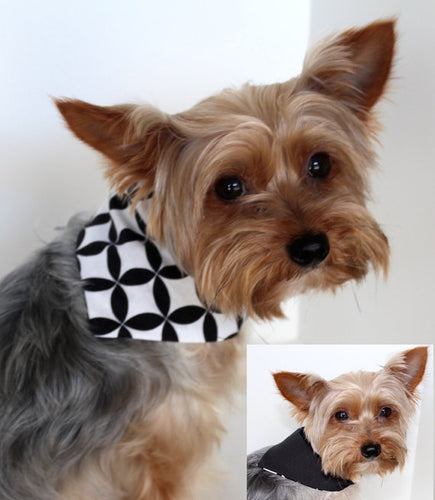 Black and White Circular Print Reversible Dog Bandana