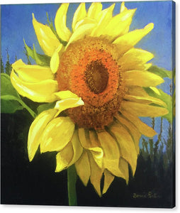 First Sunflower - Canvas Print