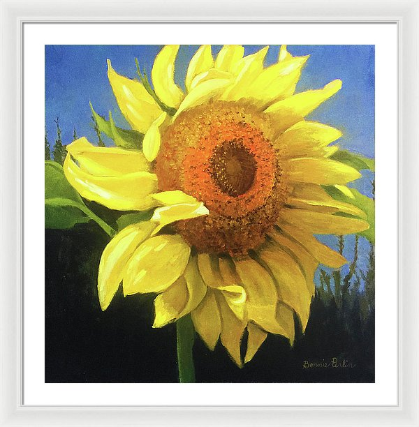 First Sunflower - Framed Print