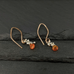 Carnelian Roe Drop Earrings