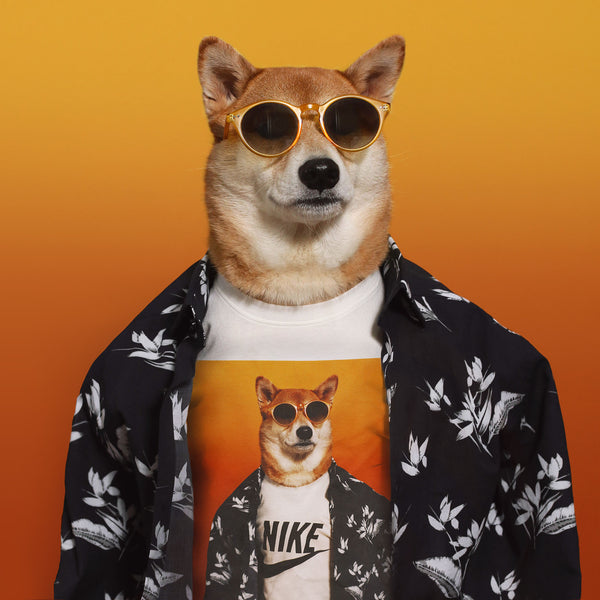 Mensweardog x Nike Capsule Collection