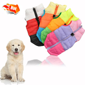 Windproof Warm Dog Jacket