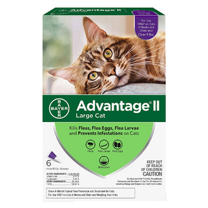 Advantage II for Cats Over 9 lbs. 6 Pack