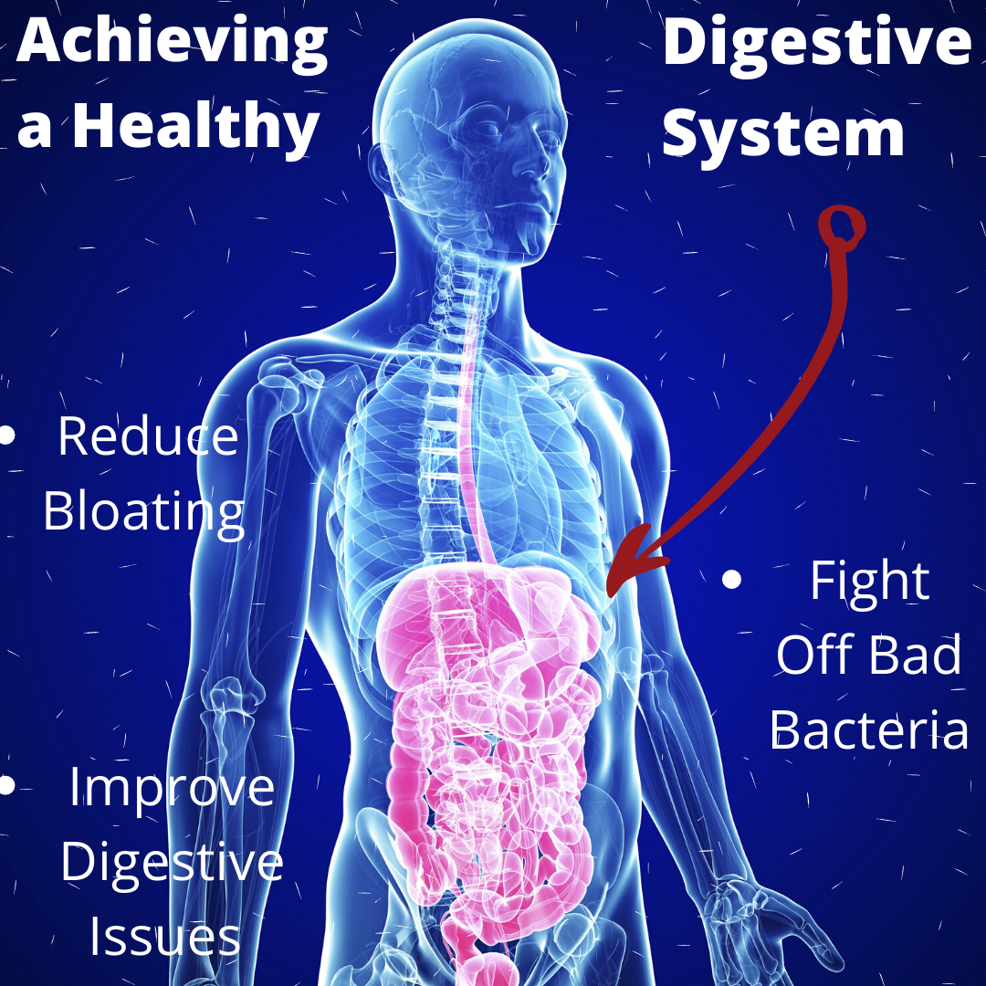 Achieving a Healthy Digestive System