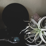 Obsidian Scrying Mirror and Mugwort Kit