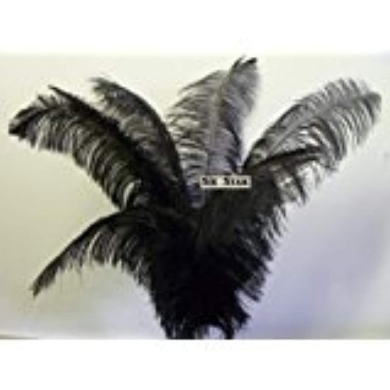 "Ostrich Deluxe Formal BLACK- Feather Plume 20-26"" Long-10 Pcs.- by Six Star Sales for Eiffel Tower Vase"