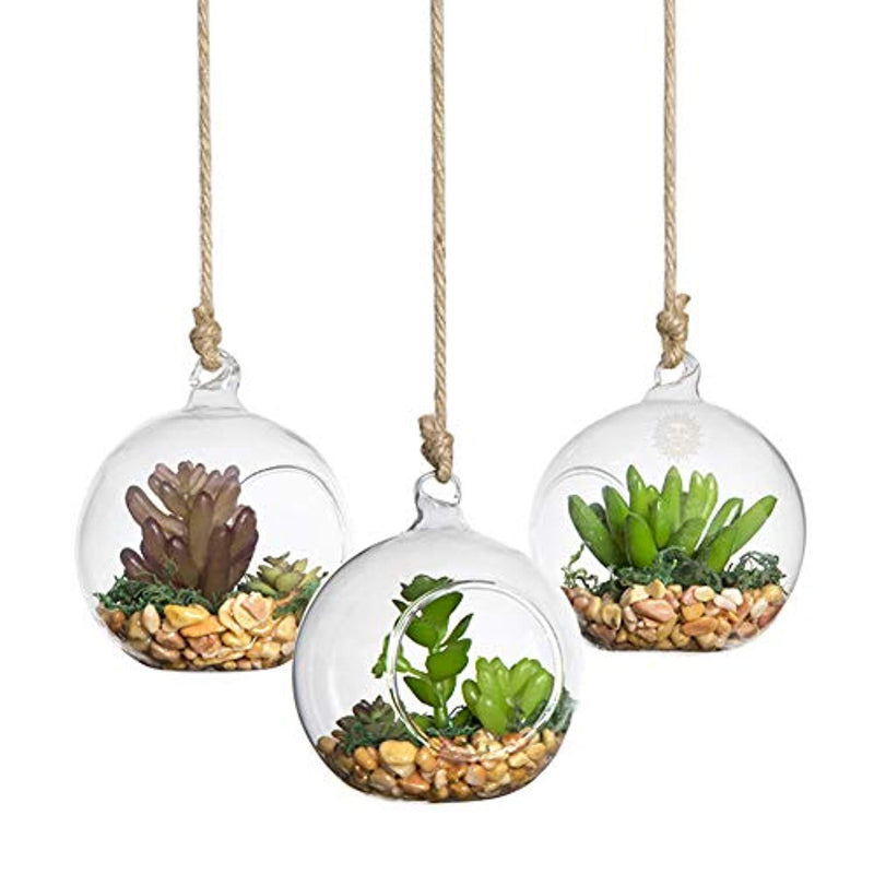 SunGrow 3 Hanging Glass Terrariums Spherical Air Plant Orb - Handmade, Heat-Resistant Glass - Create Refreshing Atmosphere in Terrace Garden - Rocks, Plants & Other Accessories NOT Included