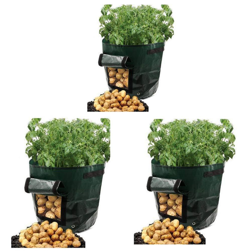 Potato Grow Bags 10 Gallon Garden Vegetables Planter Bags with Handles and Access Flap for Planting Potato Carrot Onion Taro Radish Peanut,3-Pack