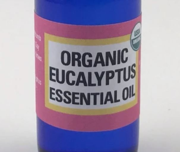 I once asked Master Choa Kok Sui if eucalyptus oil contains orange energy