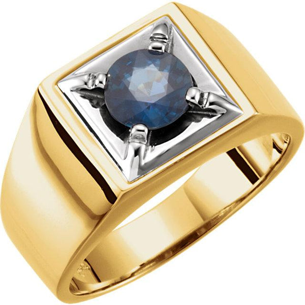14K Gold Two-Tone Blue Sapphire Men's Ring - Pranic Lifestyle