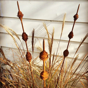 Rusty Seed Pods