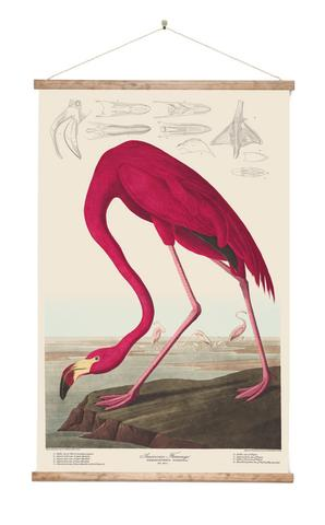 Flamingo Wall Chart