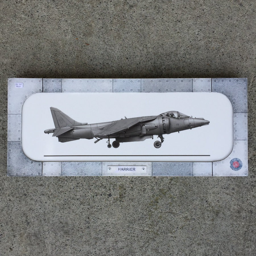 Harrier diorama