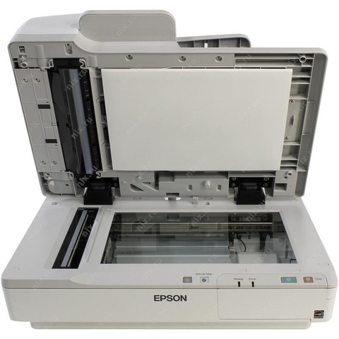 Epson Ds 7500 Escaner 48 Bits Usb Adf Red