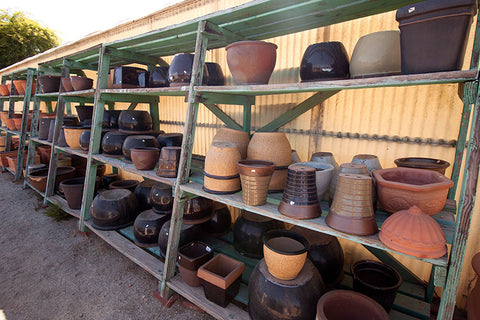 Pottery in all shapes and sizes for any type of arrangement