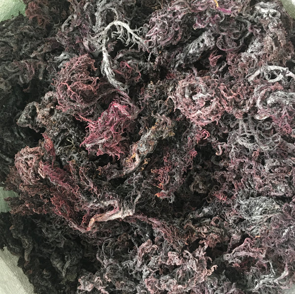 PURPLE SEA MOSS GEL | IRISH MOSS GEL | 16oz