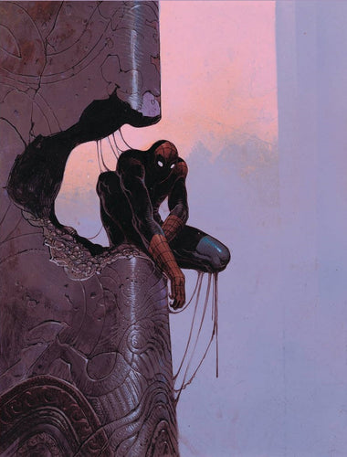 Amazing Spider-Man #800 1:100 Virgin Moebius Variant