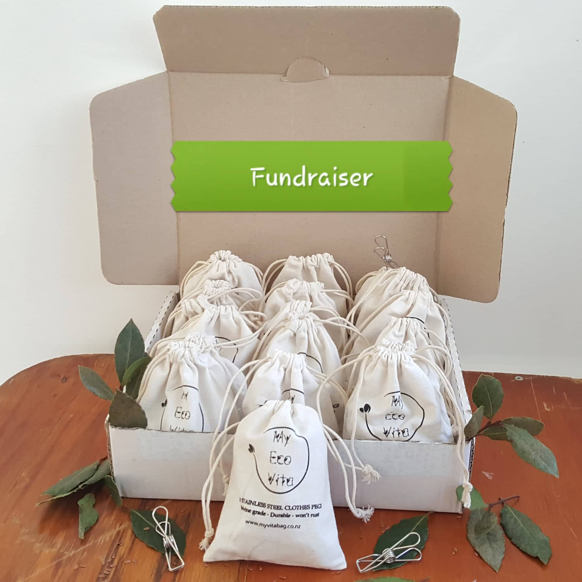 Fundraiser Box -Eco Friendly Pegs