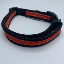 Tyson & Teddie Collar - Choice of Colours Available
