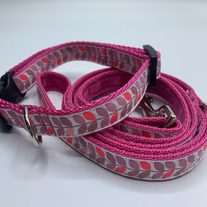 Honey Dog Collar and Lead Set **OFFER** Choice of Colours Available