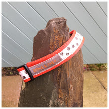 Dolly Collar - Choice of Colours Available