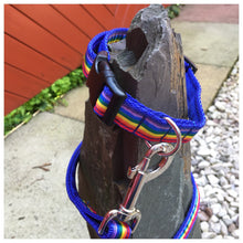 Ralph Rainbow Collar & Lead Set **OFFER** Choice of Colours Available