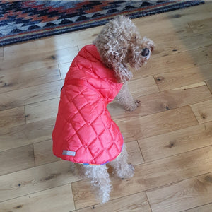 Red Dog Coat - Choice of fleece lining