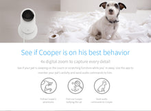 YI Home Camera 720P Black Night Vision Video Monitor IP/Wireless Network Surveillance Home Security Internation Version - Happysale24