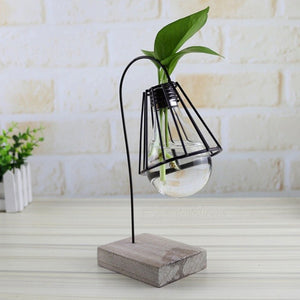 Creative Modern Style Hydroponic Plants Lamp Holder - The Well Chosen