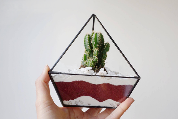 Create a sand terrarium in 5 simple steps