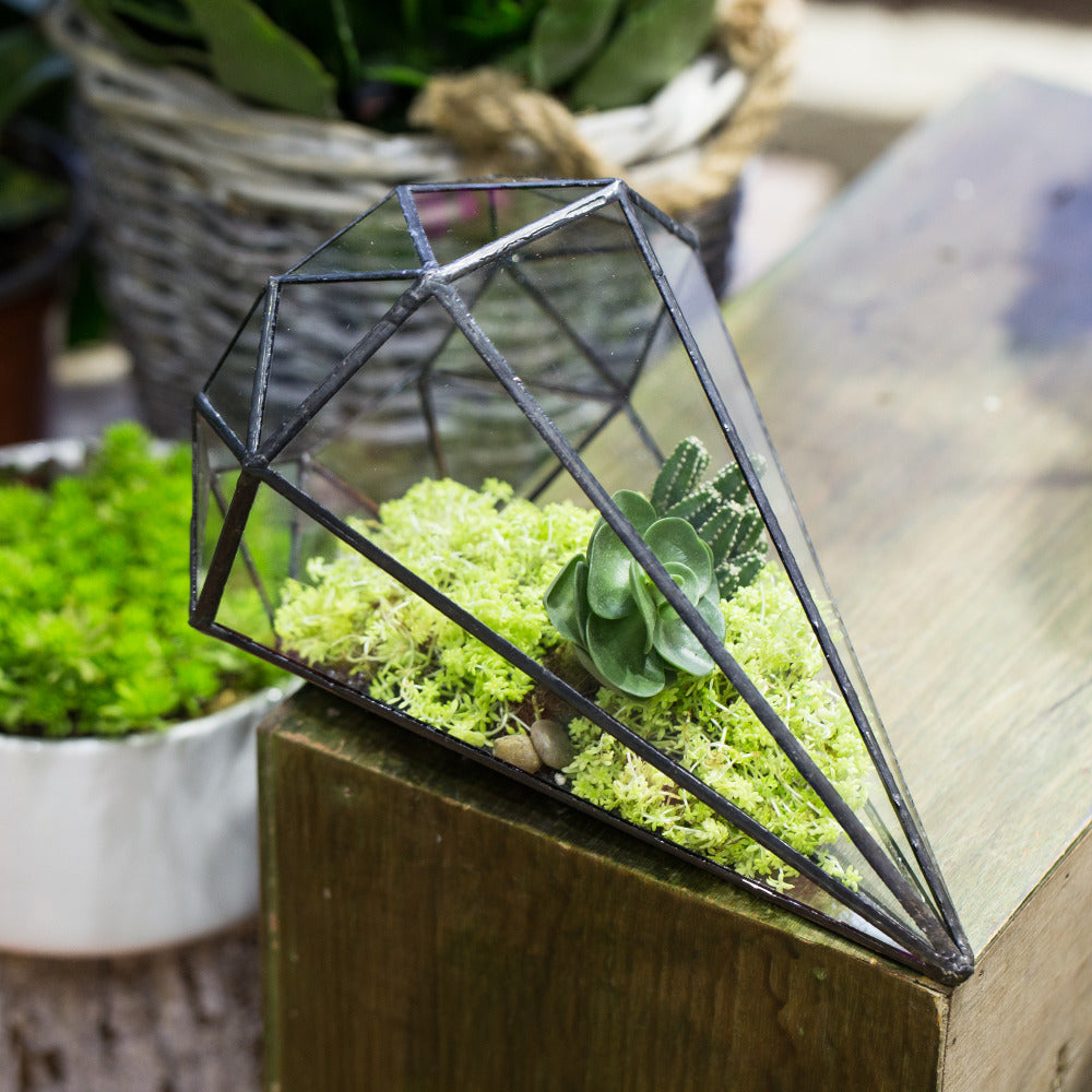 octahedral terrarium minimalism for your home