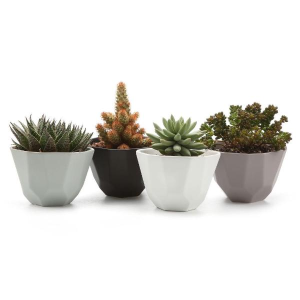 Earth Planter (4 colors)